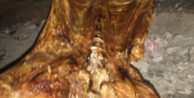 Visita guiada en Satxota+ cata+ comida con cordero o cochinillo